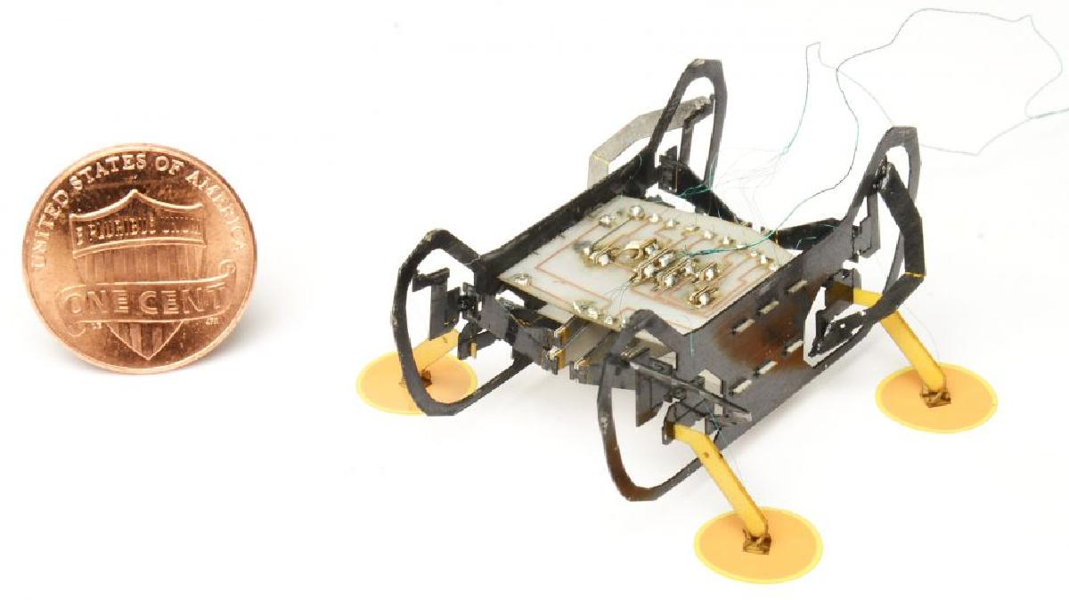 Особенность робота заключается в его функционировании