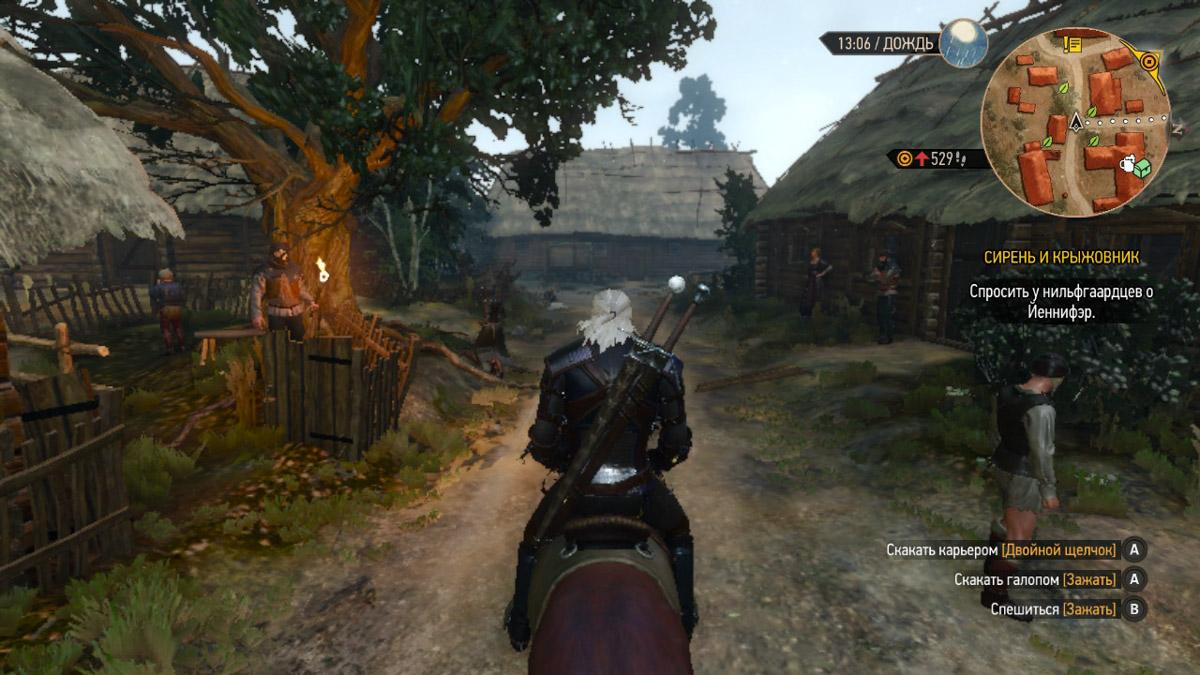 Действие игры происходит в вымышленном мире, ранее описанном Анджеем Сапковским в книгах о ведьмаке
