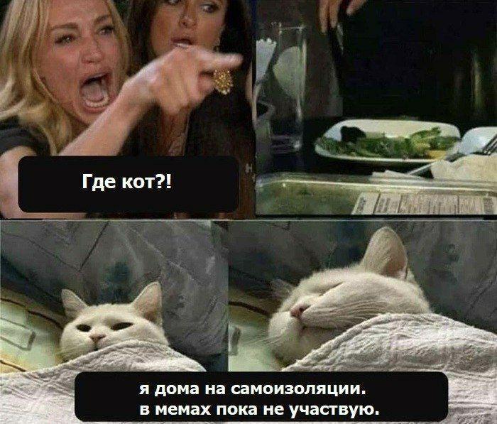 Берите пример с котика